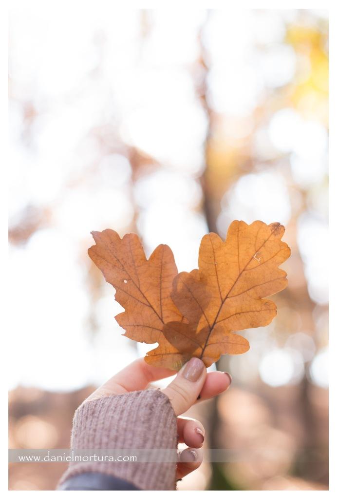 Autumn in love 14